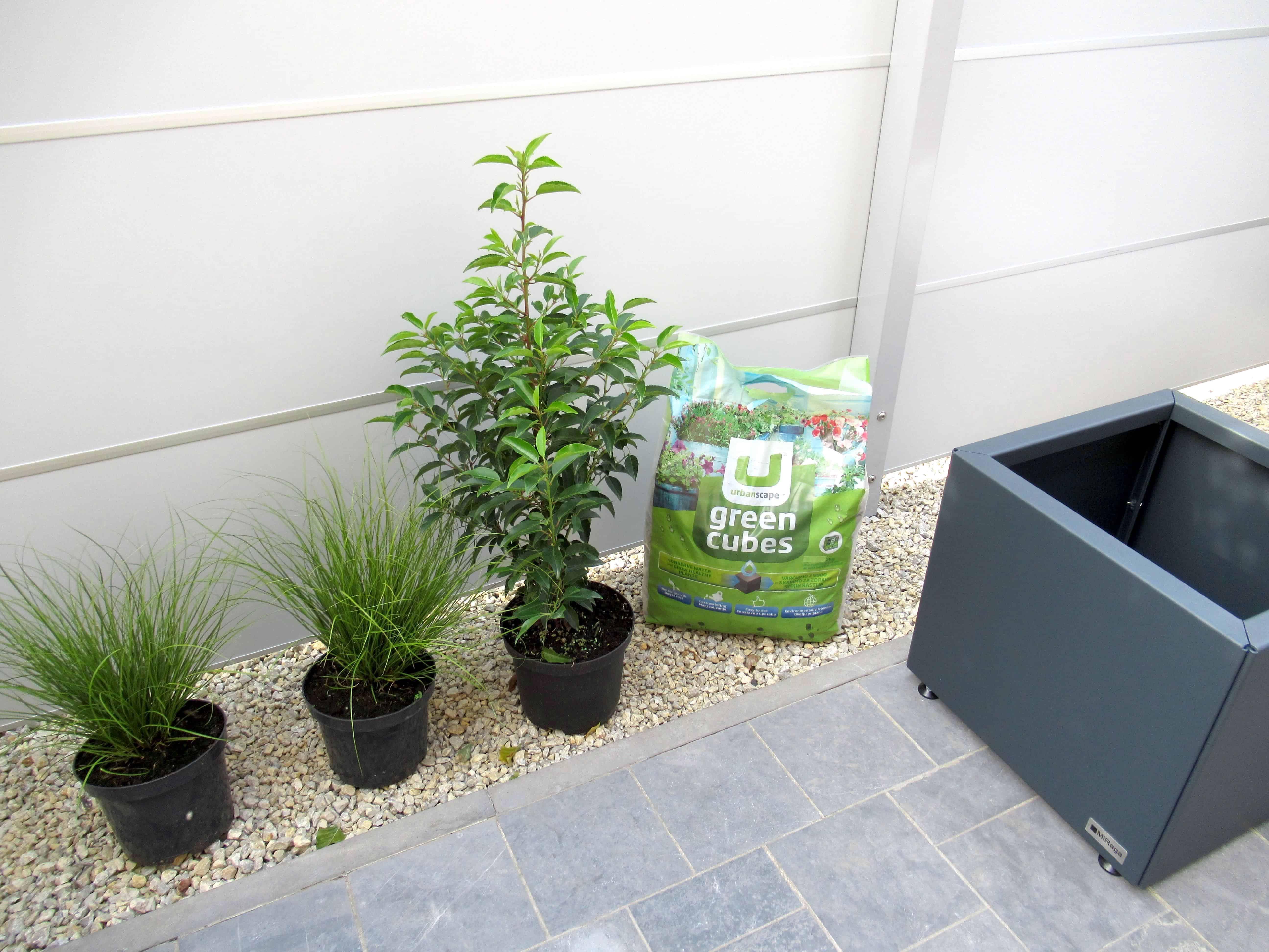 MiGreen Cubes plantjes, bloembak en grondverbeteraar