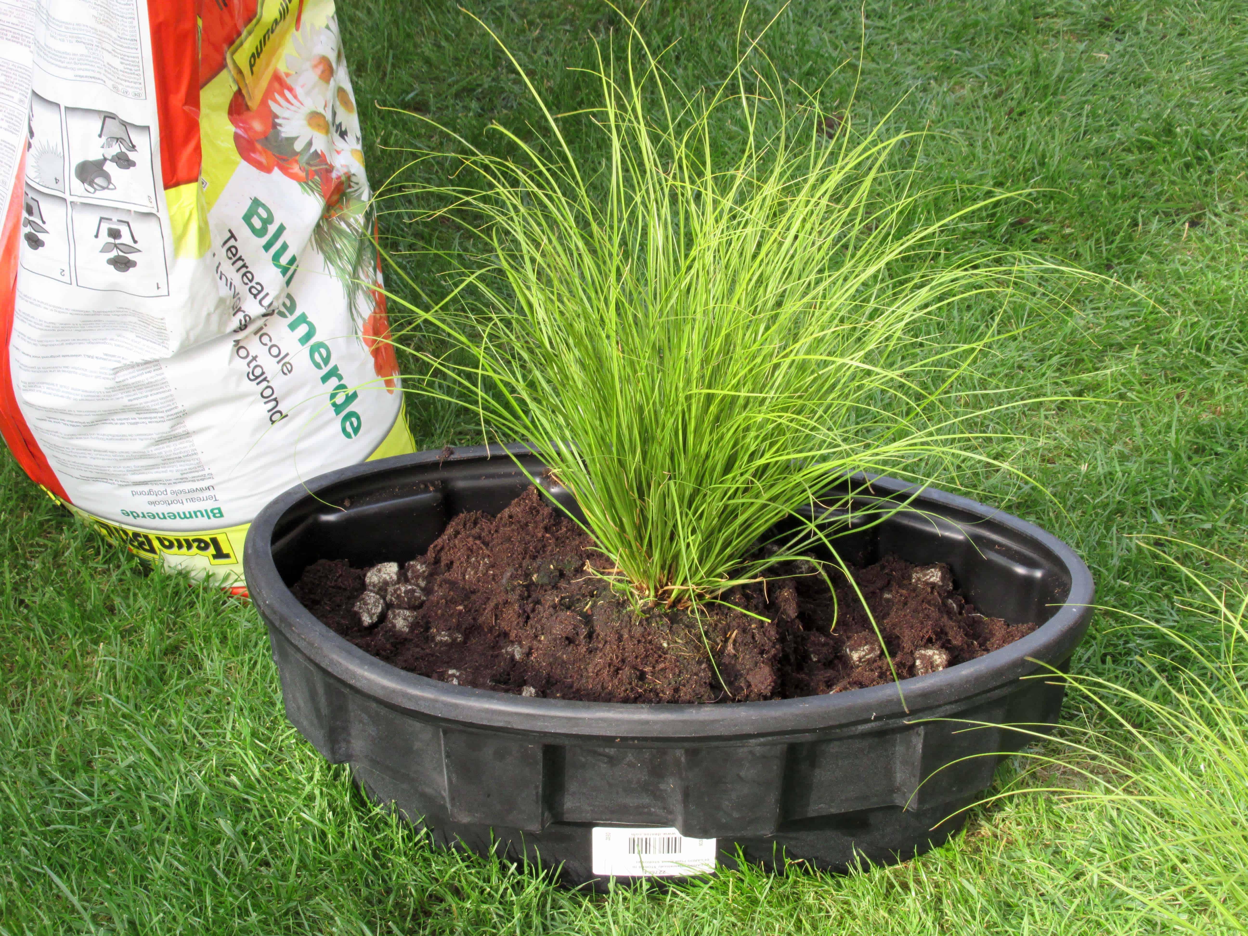 MiGreen Cubes grondverbeteraar met potgrond vermengen in de inzetbak, vervolgens de plant(en) inbrengen