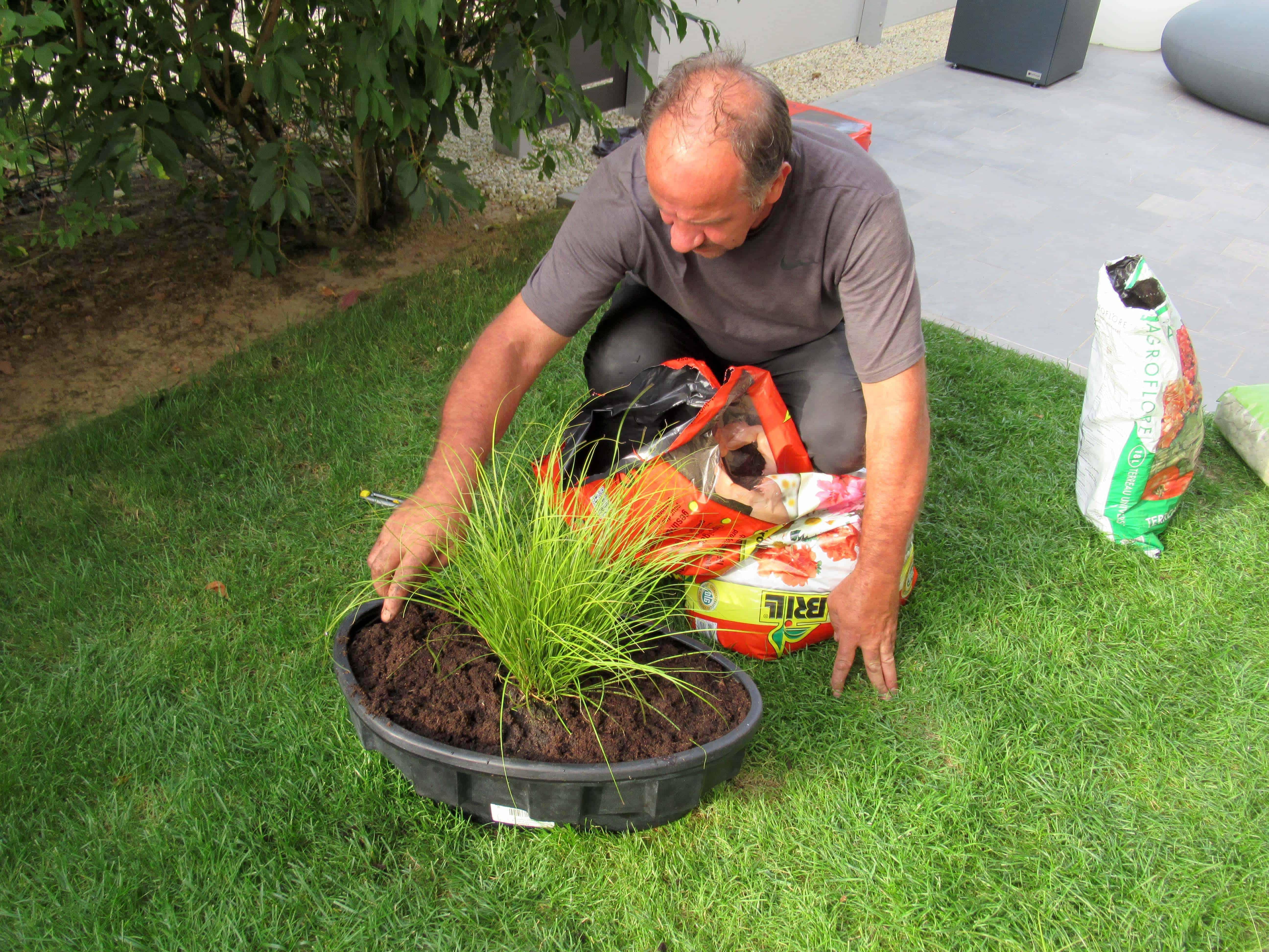 MiGreen Cubes in bloempot voor een betere groei van de planten