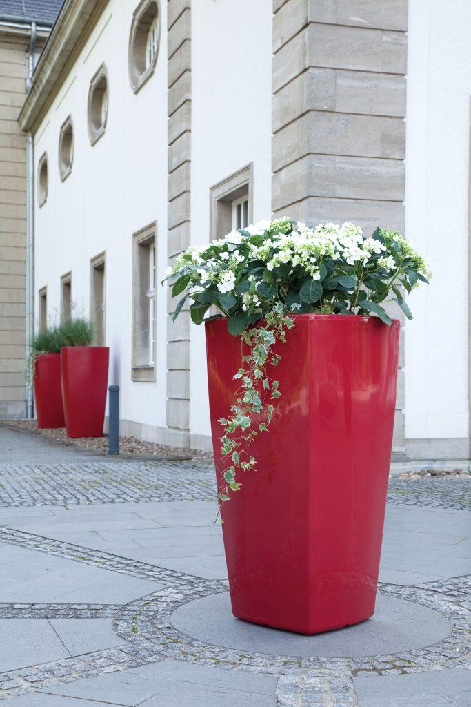 Mooie grote bloembak in openbare ruimte met accentkleur Robijnrood