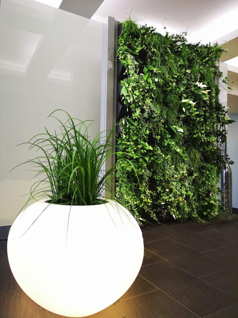 Groene wand in het interieur met stijlvolle bloembak