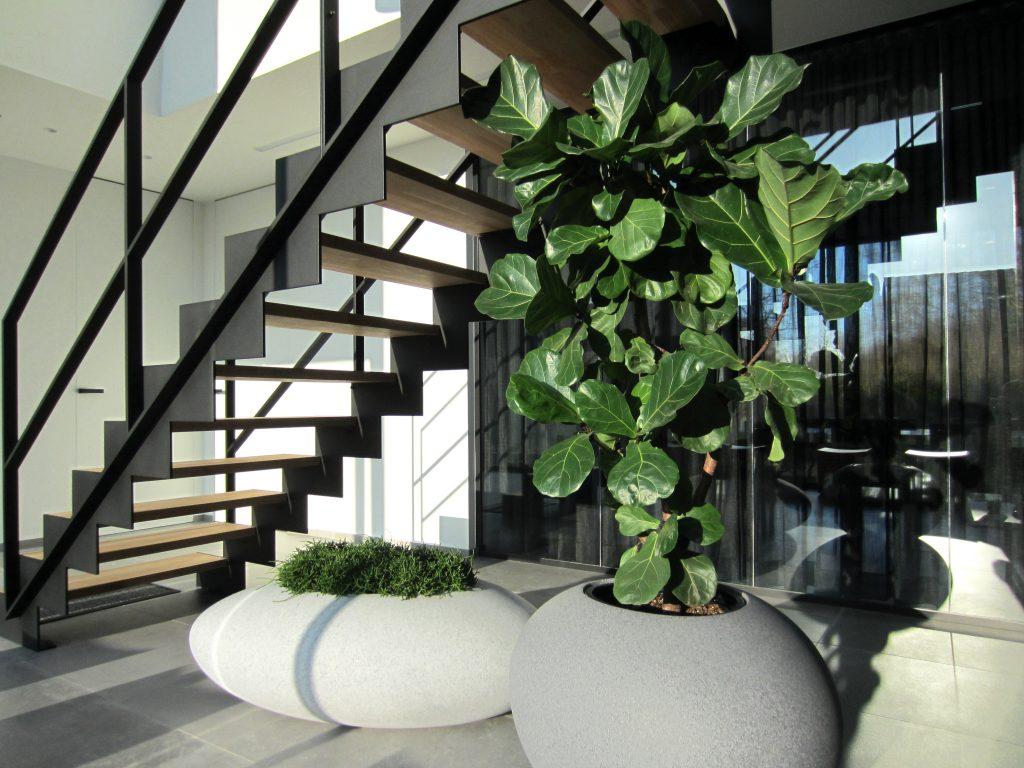 Rivierkeien bloembakken designobject in kantoor inkomhal